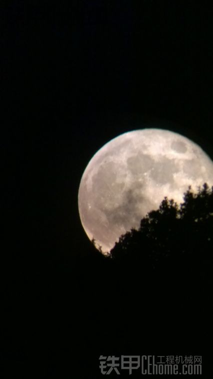 还是十六的月亮圆.